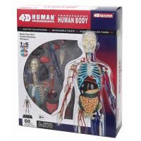 Пазл 4D Master Объемная анатомическая модель Тело человека прозра Фото