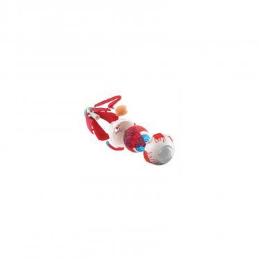 Набор для экспериментов EDU-Toys Модель глазного яблока сборная,14 см Фото 2